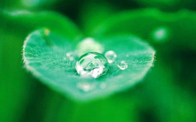 3M-Produkte – so nachhaltig wie die Partnerschaft mit Seyffer